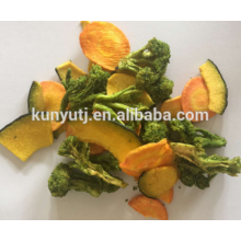 Low Temperature Vacuum Fried Fruit & Vegetable Chips