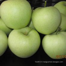 Exportation Standard Chinese Fresh Golden Apple