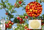 Acerola Cherry Extract 25% Vitamin C, Ascordic Acid
