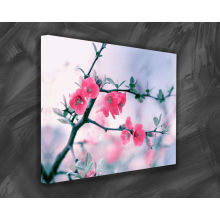 Pintura da flor para a decoração da parede com quadro
