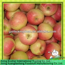 Китай 2013 новый урожай красный гала яблоко