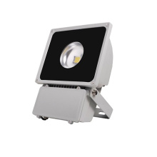 ES-80W LED Flood Light