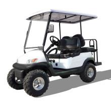 48V batterie-chargé sur mesure en plein air terrain accidenté touristique but véhicules électriques