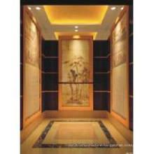 1m/S Vvvf Upscale Wooden Villa Elevator