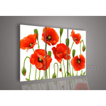 Handmade Canvas Art Flower Oil Painting on Canvas for Home Decor (FL3-139)