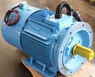 Permanent Magnet Compressor