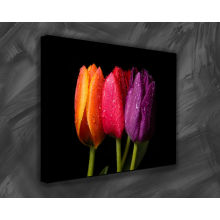 Gallery Wrap stretched framed flowers painting gifts