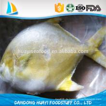 Neue gefrorene ganze 300-400g Golden Pompano / Pomfret Fisch zum Verkauf