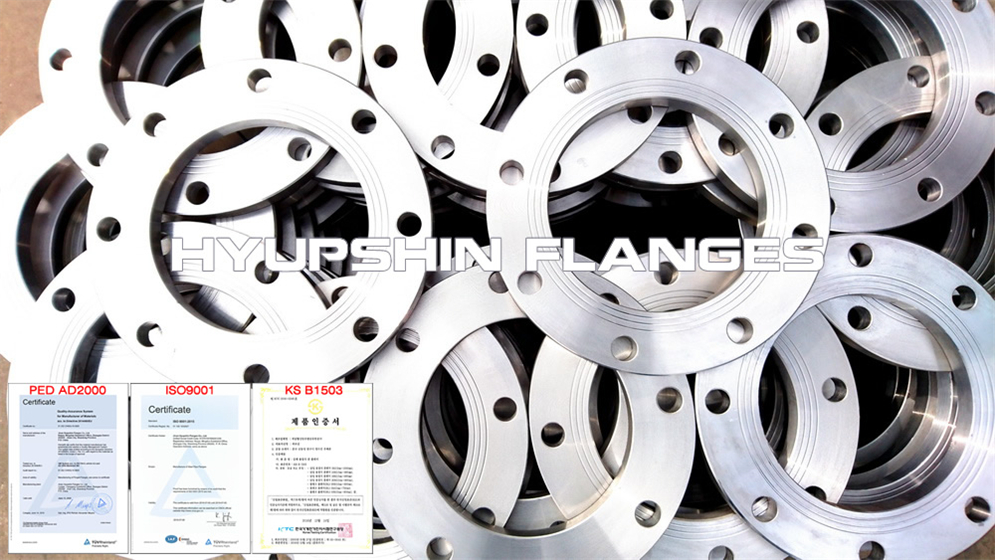 Hyupshin Flanges Din2576 2501 Plate