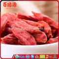 goji berries videos goji berries variety ningxia goji berry