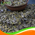 Granos de semillas de calabaza sin cáscara