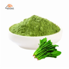 dried leaves juice organic spinach powder in bulk