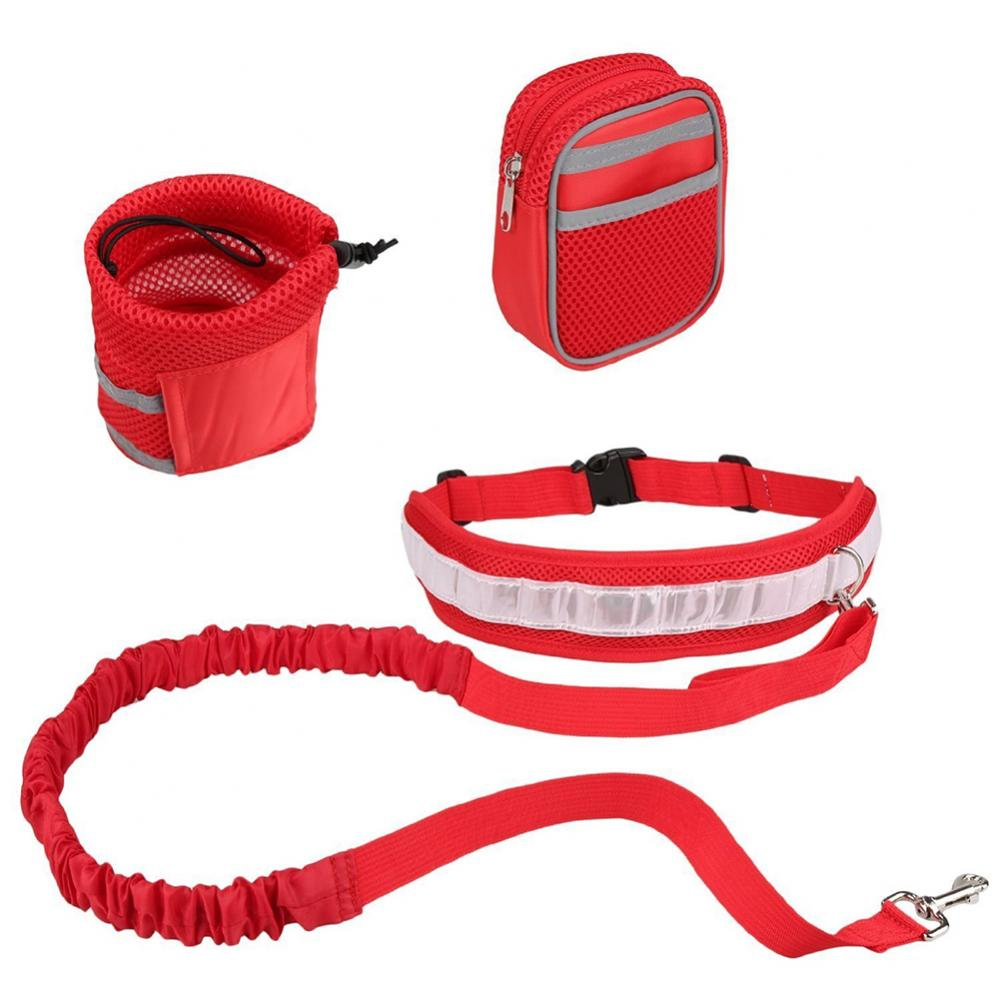 Dog Leash Running Hands Free