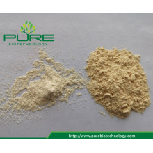 Factory Supply All Grade Dehydrated Garlic Powder