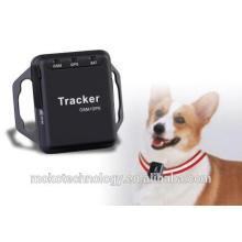rastreador GPS em tempo real para cães e animais de estimação