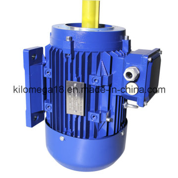 Three Phase Cast Iron Electric Motor with Ce Certificate 10kw