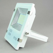 LED Flood Light LED Flood Lamp 30W Lfl1703