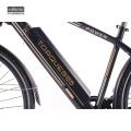 2018 Green Power Neues Design 36V350W 8Fun Mid Drive Elektro-City-Bike, niedriger Preis Ebike