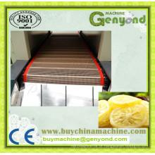 Alto Eficiente tipo de túnel de cinto cortado frutas e vegetais secagem máquina