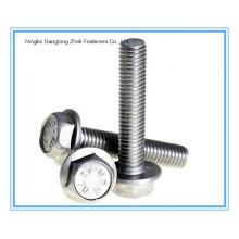 DIN6921 Ss 304/316 Parafuso de Flange Hexagonal