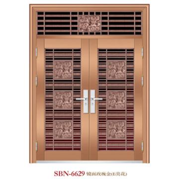 Stainless Steel Door for Outside Sunshine (SBN-6629)