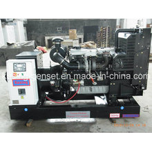 Pk30800 100kVA Diesel Open Generator with Lovol (PERKINS) Engine (PK30800)