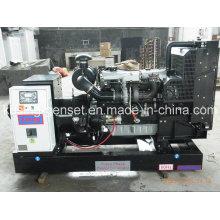 Pk30800 энергии 100kva Открытый Тепловозный генератор с Ловол (Перкинс) Двигатель (PK30800)
