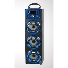 Haut-parleur portatif de grande voix de la nuit