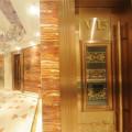 TM-UV-Dp Decorative Plates Wood Furniture Hardwood Curing Machine for UV Cured Floor Finish
