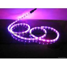 3528SMD LED-Streifen 110 / 230V LED-Streifen Licht LED-Licht