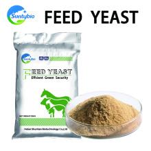 Cangzhou Feed Factory Precio al por mayor de levadura nutricional con alto contenido proteico