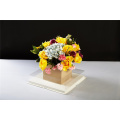 Square Gift Clear Fresh Flower Package Plastikowe pudełko