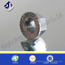 China Supplier Serrated Flange Nut in High Quality