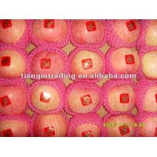 2012 shandong fresh red fuji apple exporter