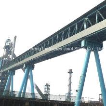 Cema / DIN / ASTM / Sha-Standard-Hochleistungstrichterbandförderer