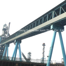 Cema/DIN/ASTM/Sha Standard Heavy Duty Trussed Belt Conveyor