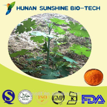 Natural pink plumepoppy herb extract/Macleaya cordata sanguinarine