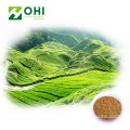 Instant Matcha Green Tea Powder