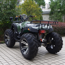 "Novo 14 ""Pneu 1500W Electric Duna Buggy (JY-ES020B)"