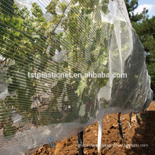 hail guard net,anti hail net for orange tree,virgin hdpe hail protection net