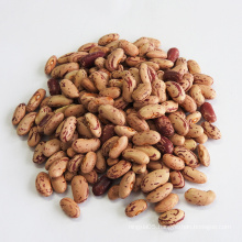 Chinese Light Speckled Kidney Beans Market Price