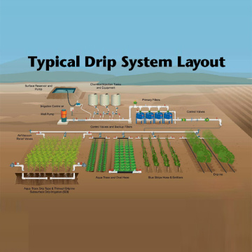 Skyplant PE Drip Irrigation Pipe