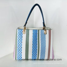 Fancy Style Popular Wholesale PU Lady Handbags (LY060283)