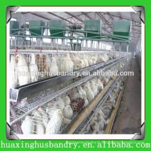 Equipement de poulet à cage d'alimentation de volaille
