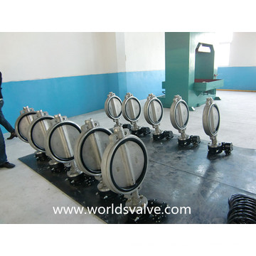 CF8m Wafer Butterfly Valve (WDS)