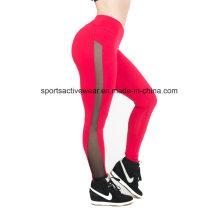 Pantalones de la yoga de la gimnasia de Sportwear de las mujeres al por mayor de la llegada nueva