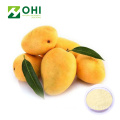 Mango Fruit Juice Powder