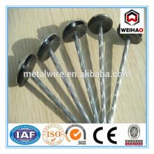 Prix d'usine des fournisseurs de clous de parapluie en Chine