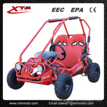5.5HP 50cc/163cc Offroad Kids Gas Mini Buggy