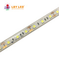 SMD5050 LED Strips 12V/24V